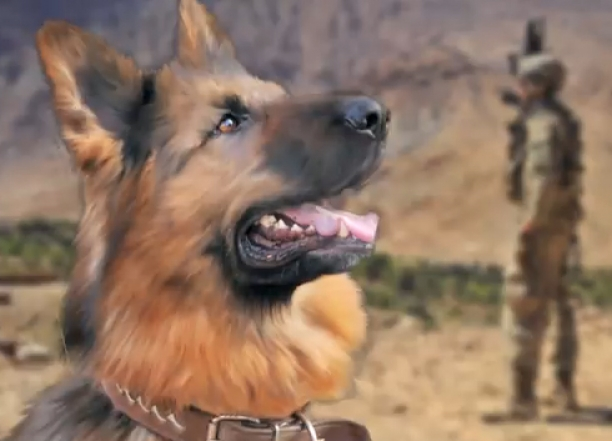 How Three Dogs Saved 50 Soldiers!