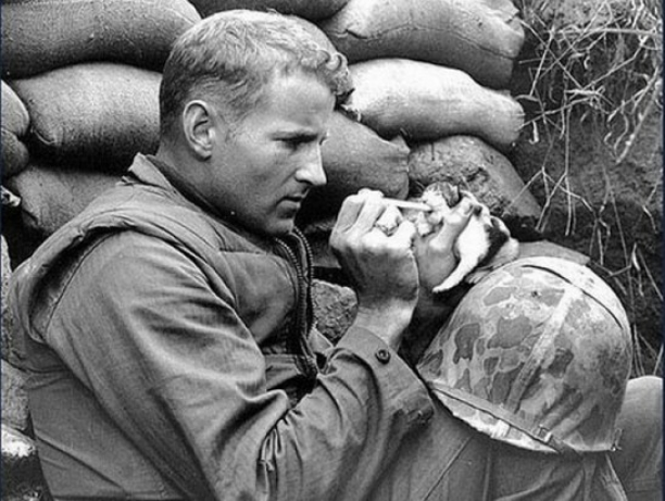 Combat Boots + Puppy Paws...Even In Times Of War These Men Are Human