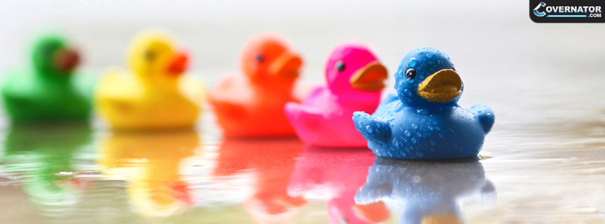 rubber ducks Facebook cover