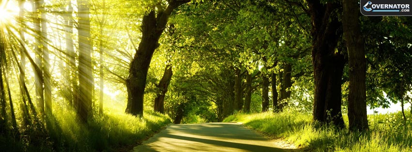 Forest road Facebook cover