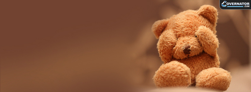 teddy bear Facebook cover